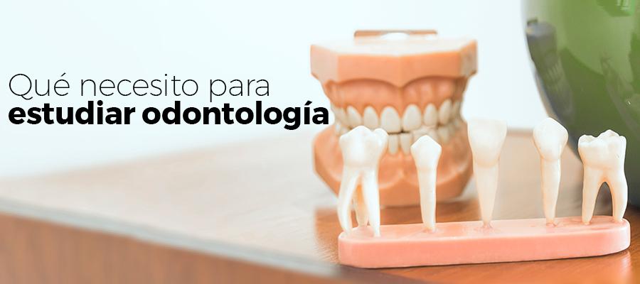 Qué necesito para estudiar odontología